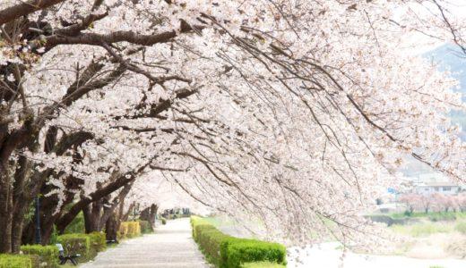 「桜を見る会」前夜祭の食事(料理)は?会費は安すぎたのか!?