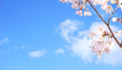 桜を見る会とは?わかりやすく解説!何が問題なの!